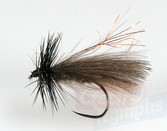 CDC_Dark_Sedge_S_4b7666cc706f0.jpg